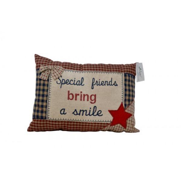 Tartan Cushions - Special friends (STAR)